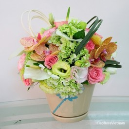 Bouquet in Pot, Bouquet in Pot