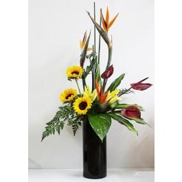 In Vase, In Vase
