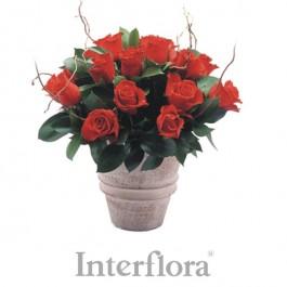 Ramo de rosas rojas (jarrón incluido), ZM#R05 Ramo de rosas rojas (jarrón incluido)