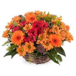 Madeira, Arreglo en cesta de flor variada