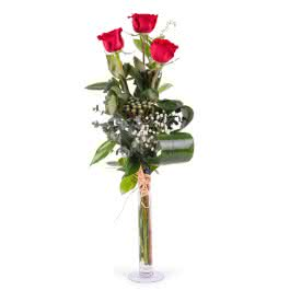 Tercia, 3 Rosas Rojas  de Tallo Largo