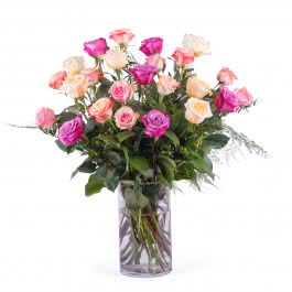 Entrega, 24 Rosas Multicolor de Tallo Largo