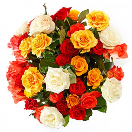 12 Roses free color choice, 12 Roses free color choice