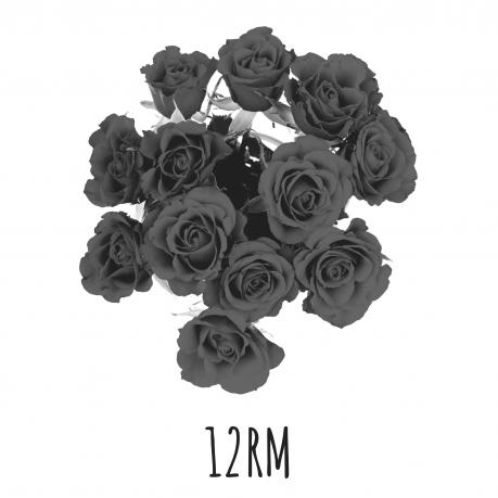 12 rosas de tallo medio, BE#12RM 12 rosas de tallo medio