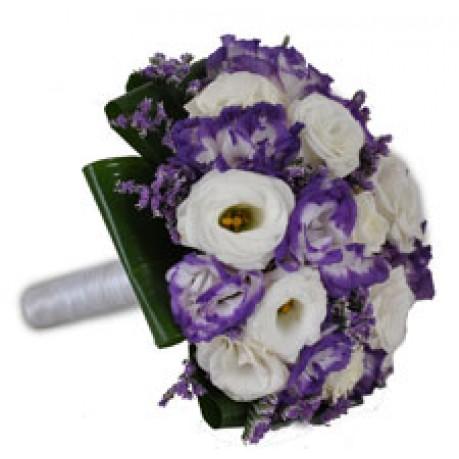 purple white, purple white