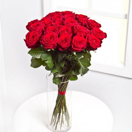 12 rosas de tallo medio, LT#12RM 12 rosas de tallo medio