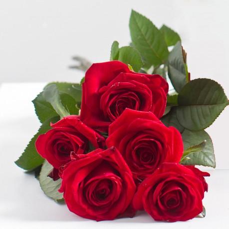 Ramo de 5 rosas rojas, LT#562 Ramo de 5 rosas rojas