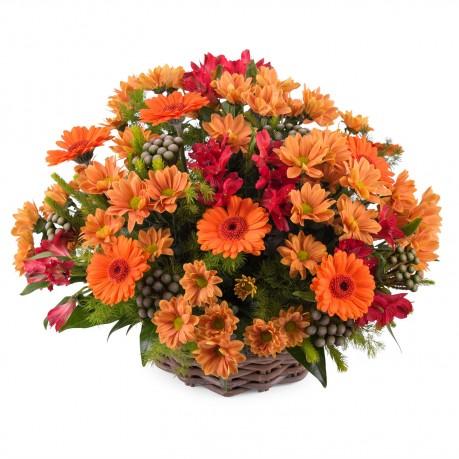 Basket arrangement of mixed flowers, Basket arrangement of mixed flowers