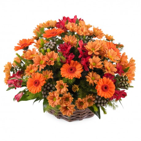 Basket arrangement of mixed flowers, Basket arrangement of mixed flowers