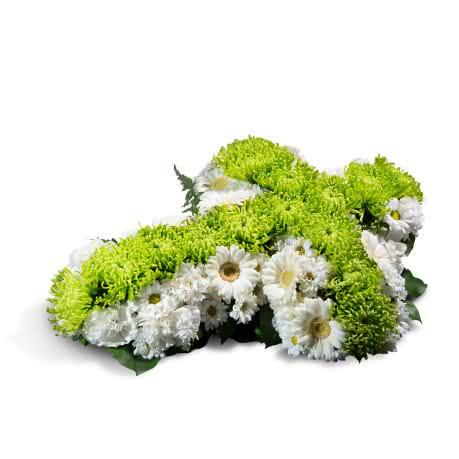 Cruz Pequeña, Cruz pequeña blanca y verde