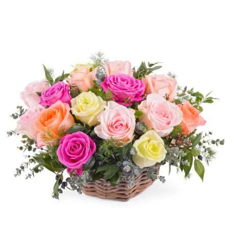 Provenza, Centro de rosas multicolor