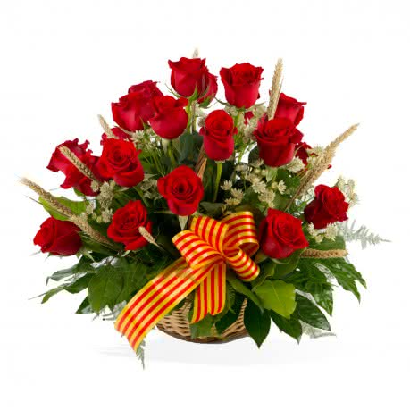 Cesta Premium Sant Jordi, Cesta de 20 rosas de tallo corto decorada para Sant Jordi