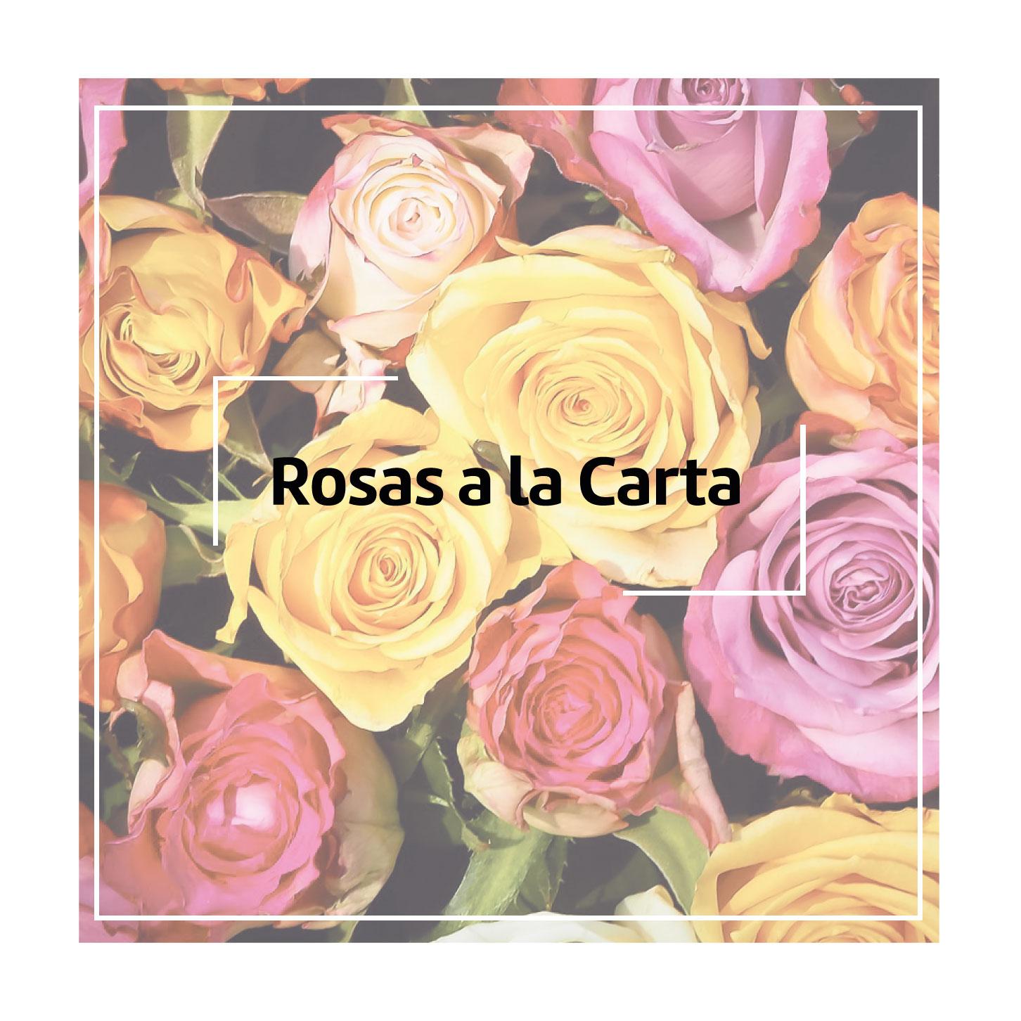 Rosa Unitaria de 70 cm de color rojo, Rosas a la carta