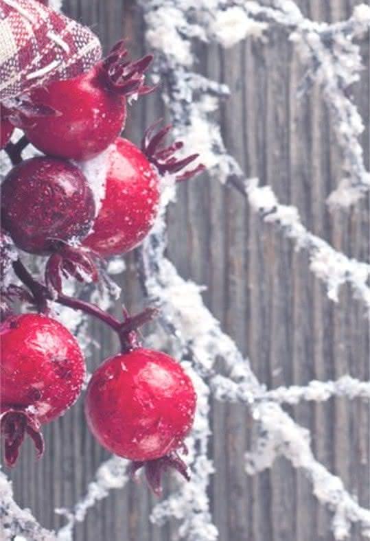 Consejos Interflora - Consejos para preparar tus arreglos florales navideños
