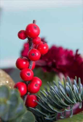 Blog Interflora - Acebo y muérdago: Las flores de la Navidad