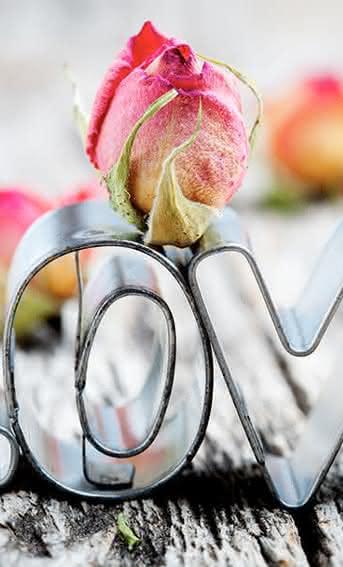 Regala flores en San Valentín, siempre con Interflora