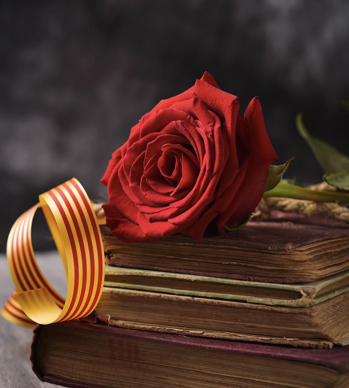 Celebra Sant Jordi con rosas, libros y dedicatorias originales