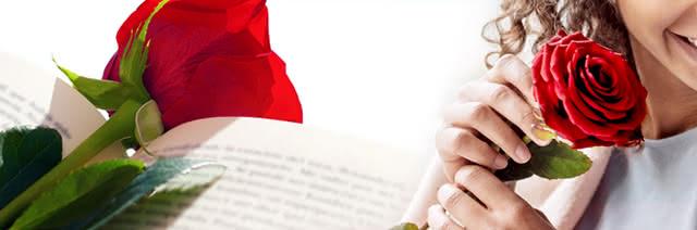 Flores y regalos para Sant Jordi