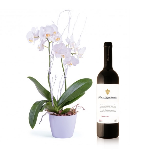 50% en tu vino Félix Azpilicueta para regalar vino a Papá