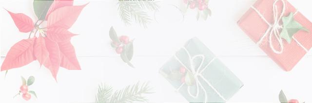 Flores para sorprender en Navidad