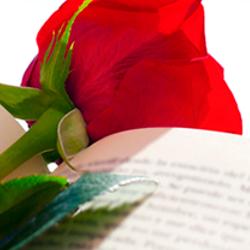 Interflora - Fiestas de Sant Jordi