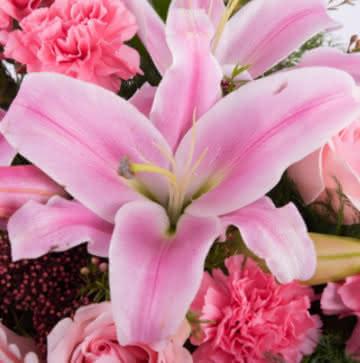 Ramo rosas color rosa