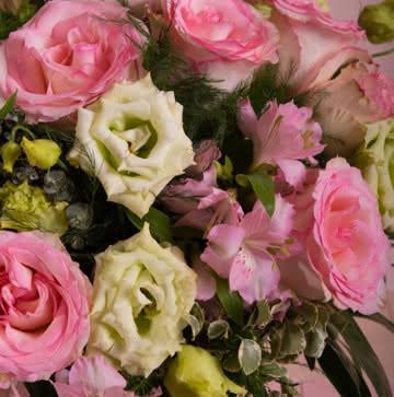 Enviar rosas en tonos rosas