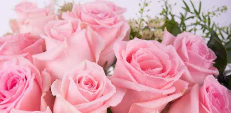 Enviar una ramo de rosas rosas a domiclio