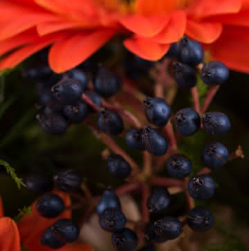 Enviar ramos de rosas naranjas