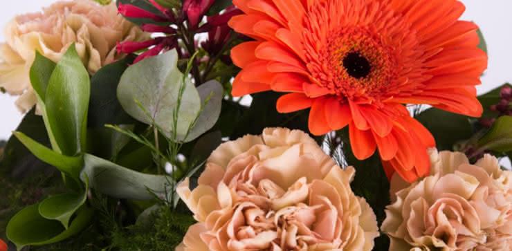 Enviar ramo de rosas y gerberas domicilio