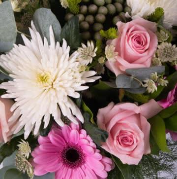 Enviar ramo de rosas y gerberas rosas
