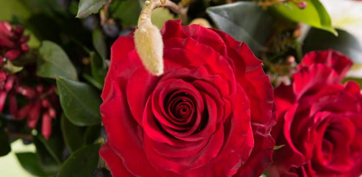 Enviar ramo de rosas y liliums domicilio