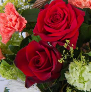 Cesta con rosas y claveles