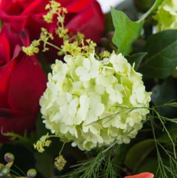 Enviar cesta con rosas