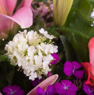 Ramo con liliums rosas