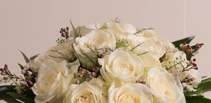 Enviar una ramo de rosas blancas a domiclio