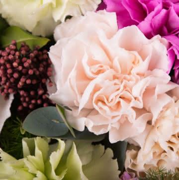 Enviar ramo con claveles multicolor