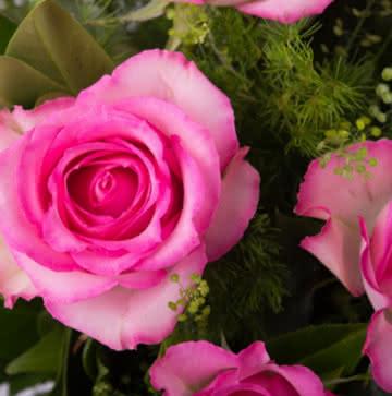 Enviar centro de rosas