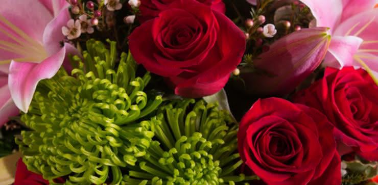 Enviar rosas, liliums y gerberas