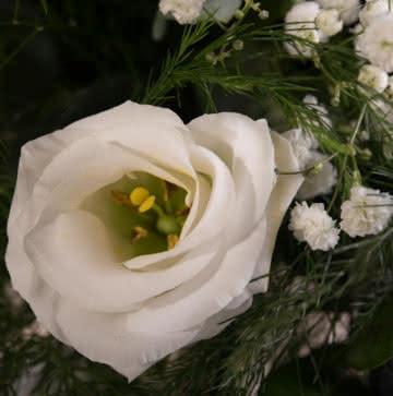 Enviar ramo con rosas amarillas