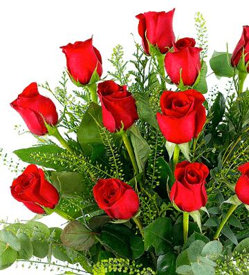 Enviar rosas