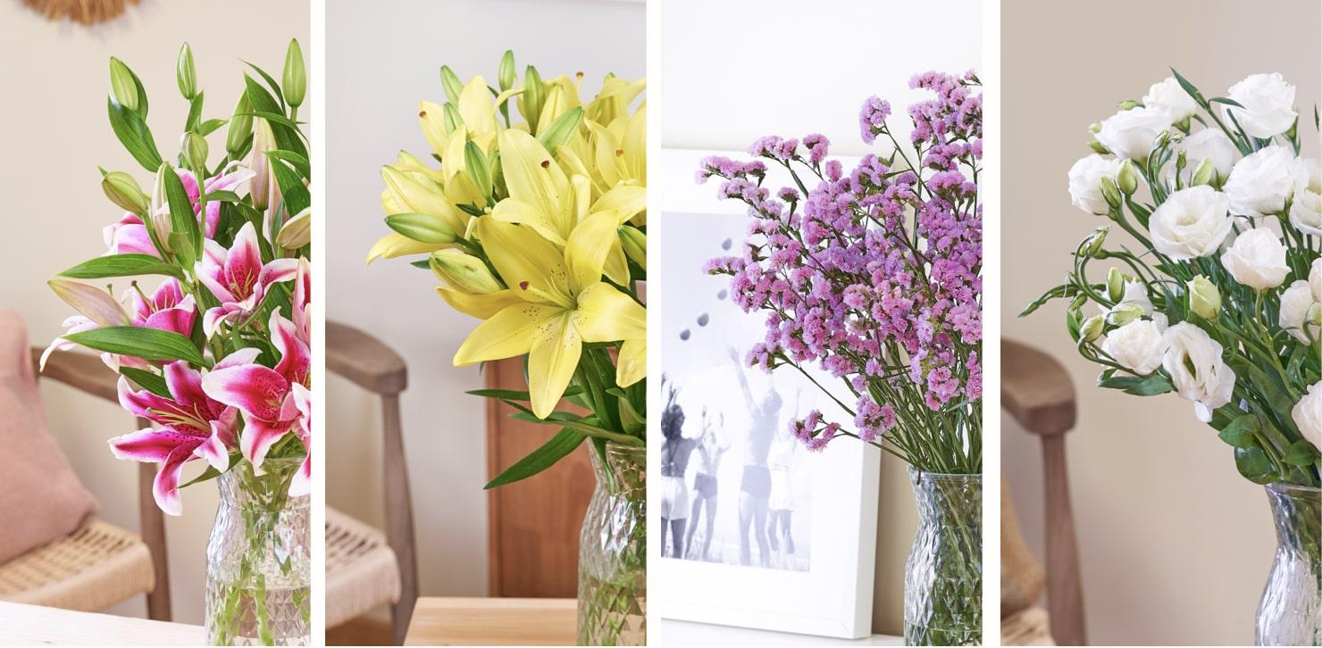 Colección de ramos de flores Fresh Colors Matter