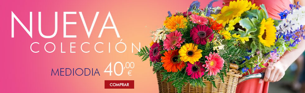 Interflora - Nuevas flores para cumpleaños, nacimientos y demostrar tu amor con entrega en el día.